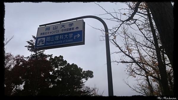 DSC_5572.JPG